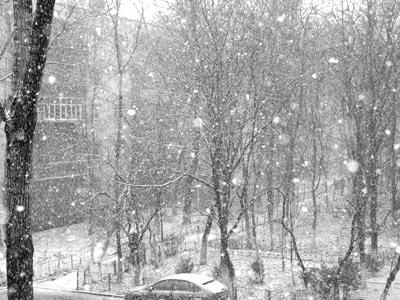 _ninge2